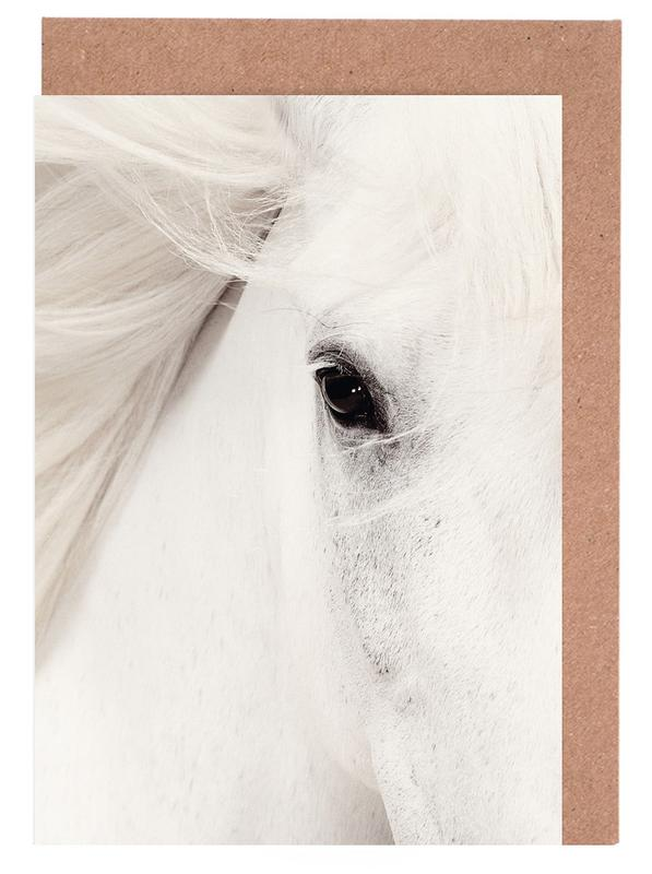 White Horse Greeting Card Set