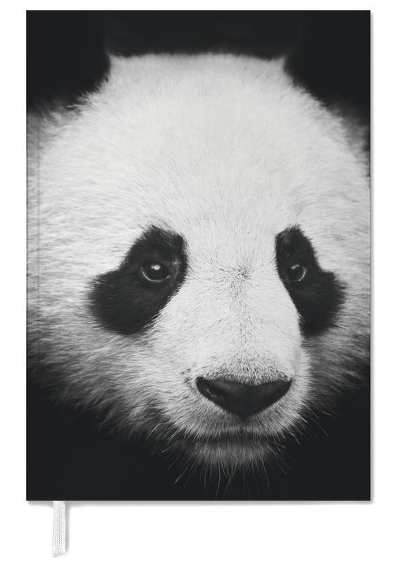 Zwart en wit, Panda's, Panda agenda