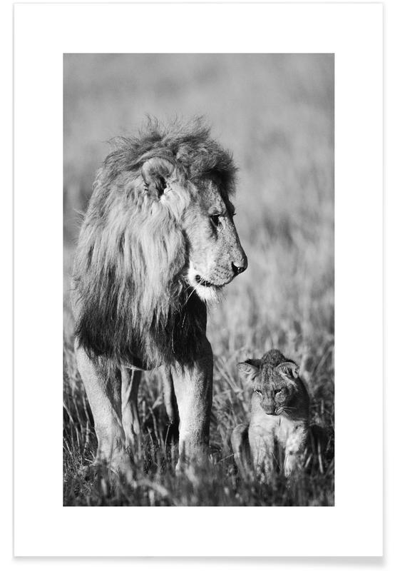 Lion Teaching His Cub affiche