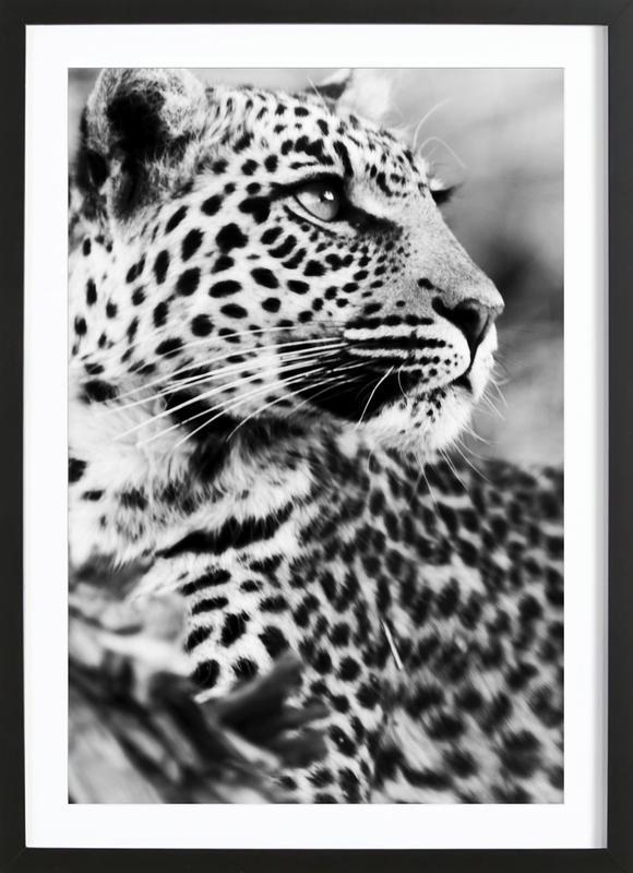 A Leopard's Spots affiche sous cadre en bois