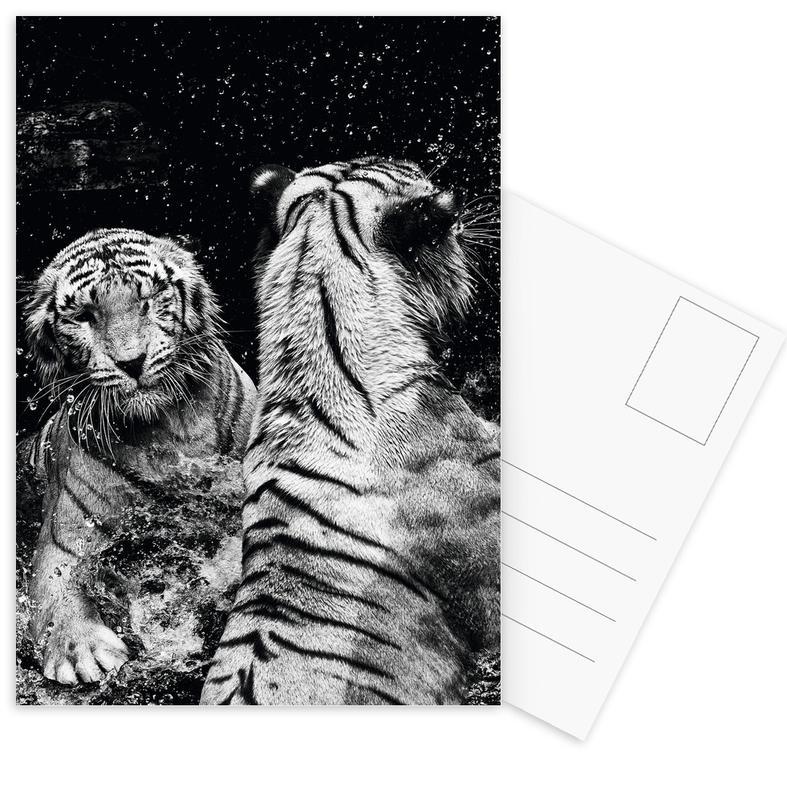 Water Games -Postkartenset