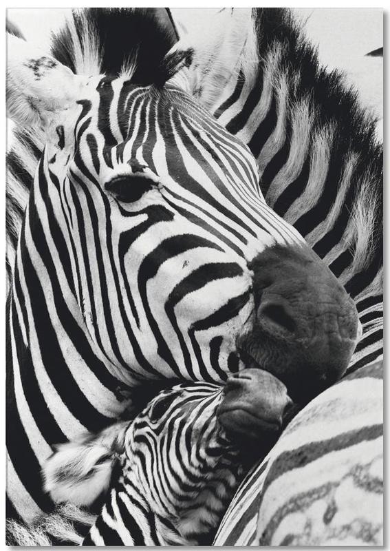Zebras -Notizblock