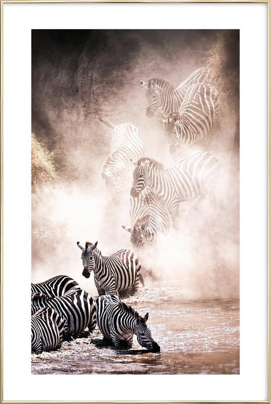Crossing the Mara River Poster in Aluminium Frame
