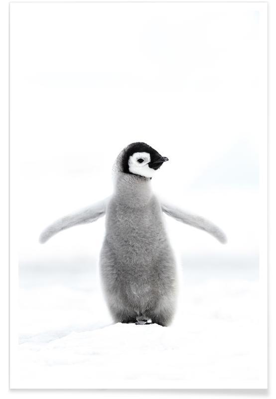 Art pour enfants, Noir & blanc, Pingouins, Lone Penguin affiche