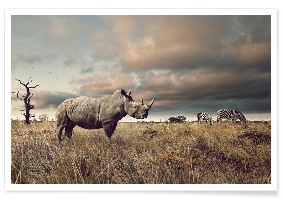Animaux de safari, Animal Encounters affiche
