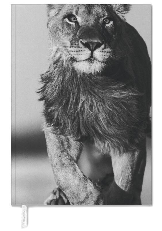 Black & White, Safari Animals, Lion Sprint Personal Planner