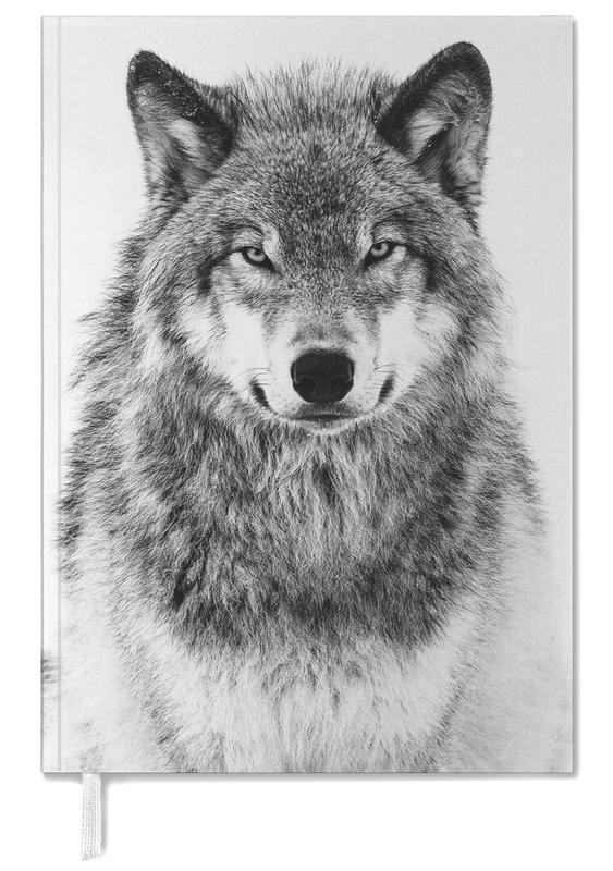 Loups, Winter Warrior agenda