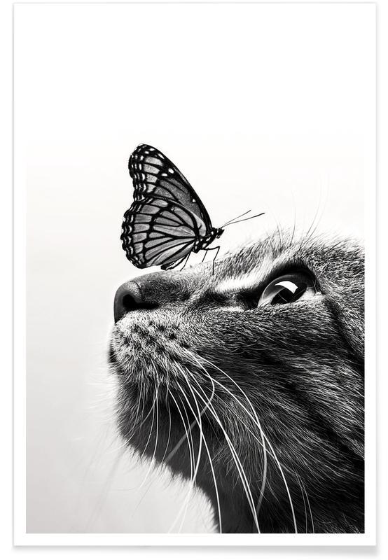 Børneværelse & kunst for børn, Sort & hvidt, Sommerfugle, Butterfly Kiss Plakat