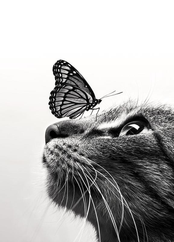 Butterfly Kiss Canvastavla