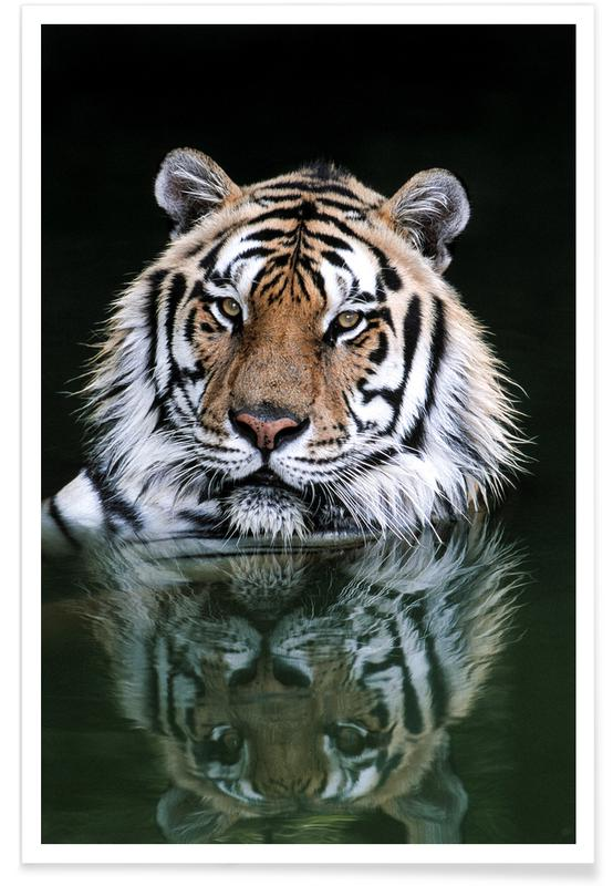 Striped Reflections Poster