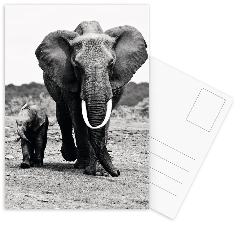 Big and Little -Postkartenset