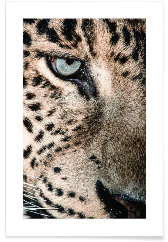 Leopard's Eye -Poster