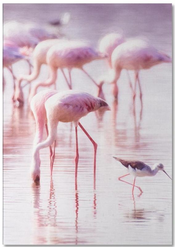 Kinderzimmer & Kunst für Kinder, Flamingos, Flamingos in the Shallow -Notizblock