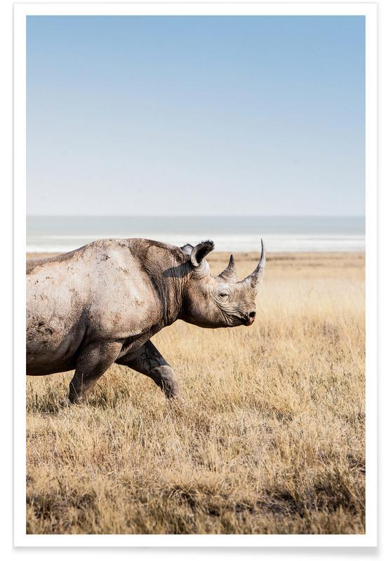 Animaux de safari, Rhino affiche