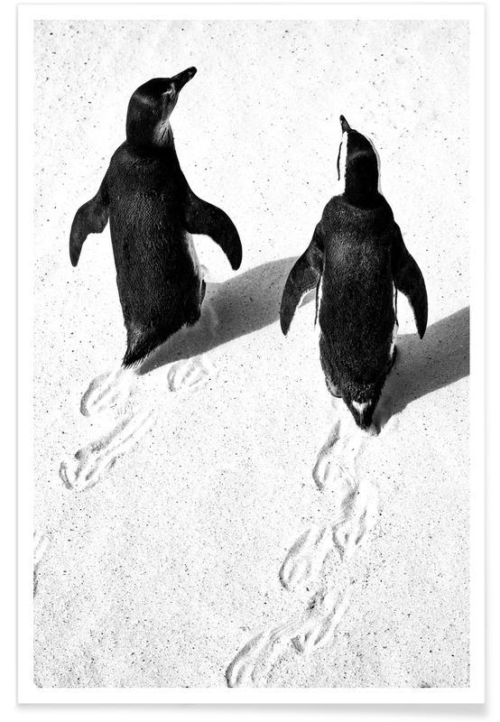 Art pour enfants, Noir & blanc, Pingouins, Pingouins marchant dans la neige affiche