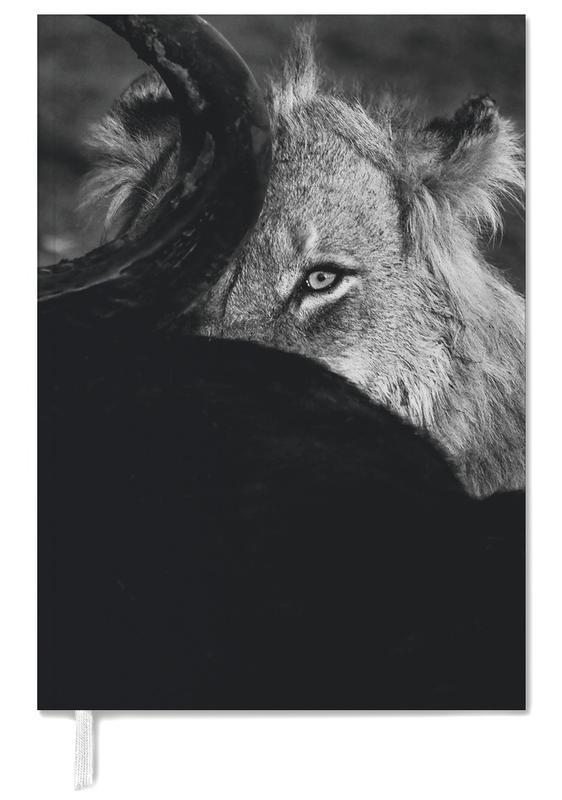 Black & White, Safari Animals, Staring Lion Personal Planner