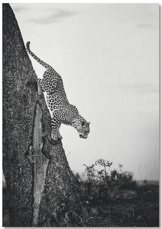Luipaarden, Zwart en wit, Pouncing Leopard Notebook