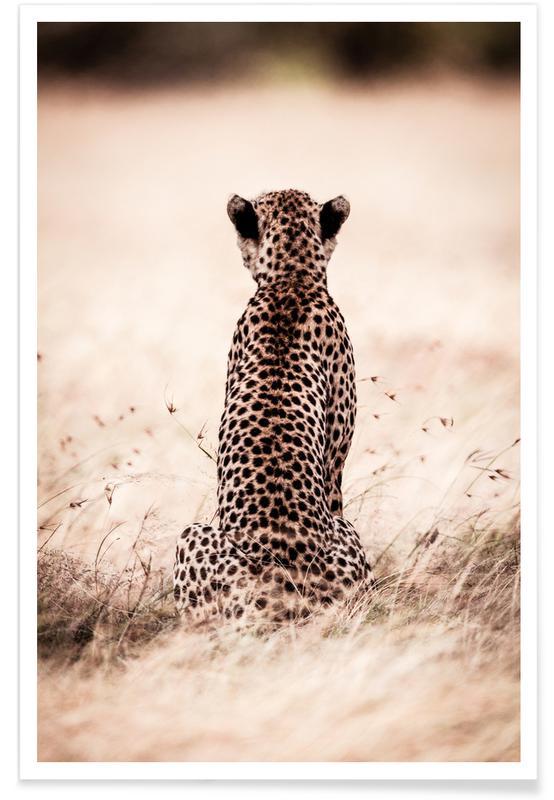 Safari dyr, Still Leopard Plakat