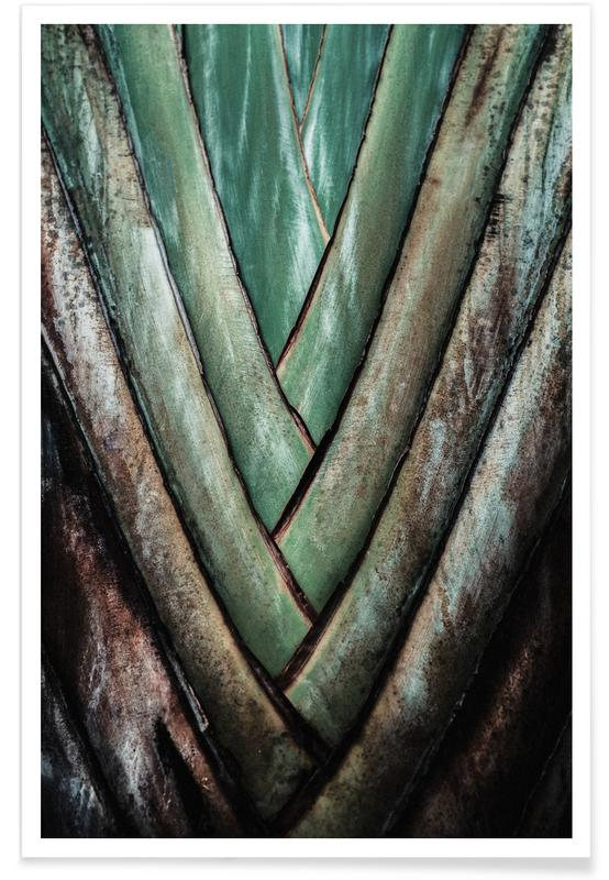 Travellers Palm poster