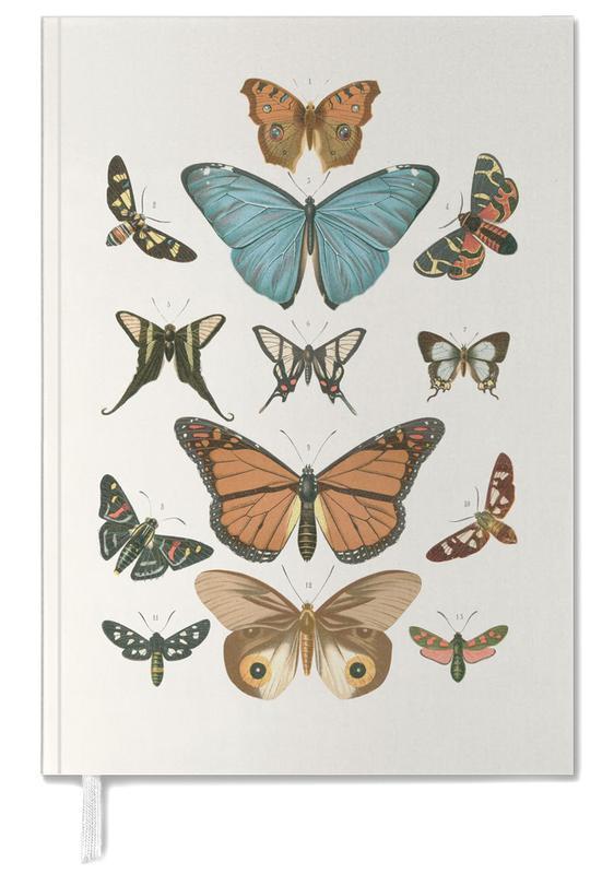 Butterflies -Terminplaner