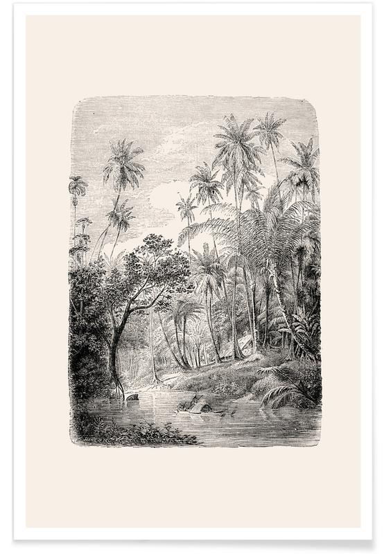 Palmer, Træer, Skove, Sri Lanka Plakat
