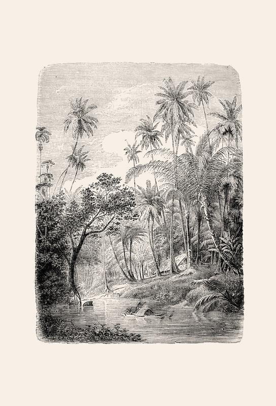 Sri Lanka Acrylic Print