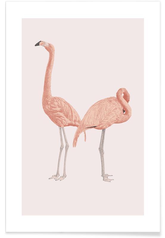 Flamingoer, Pink Flamingos Plakat