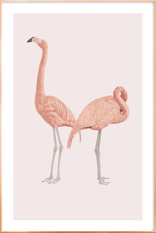 Pink Flamingos Poster in Aluminium Frame