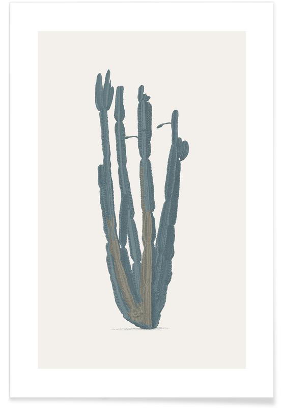 Cactus, Desert Flower poster