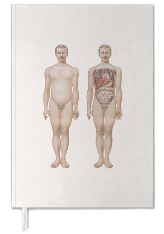 , Anatomy agenda