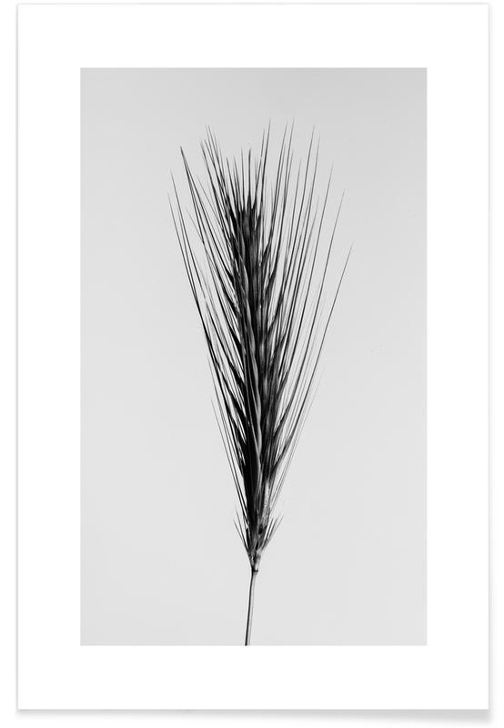 Blanco y negro, Hojas y plantas, Strange Beauty III póster