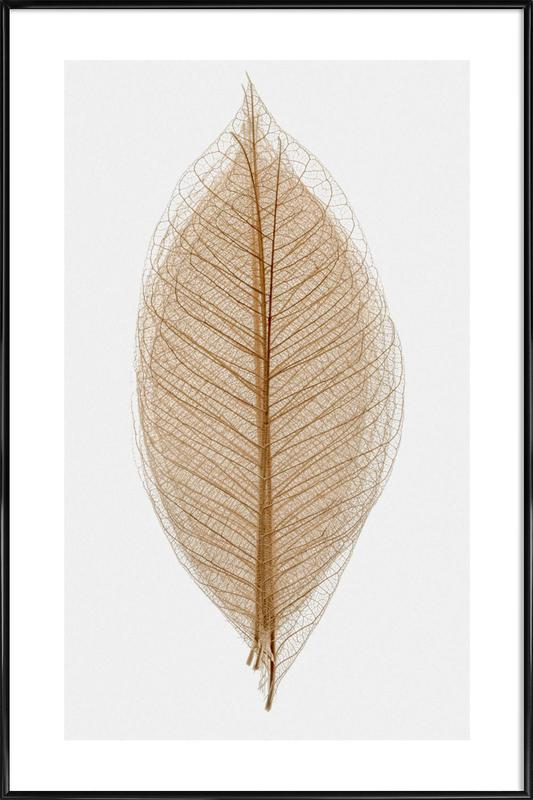Skeleton of a Leaf II Poster i standardram