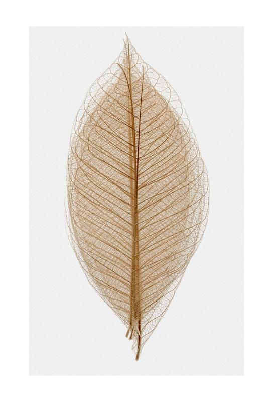 Skeleton of a Leaf II Aluminiumtavla