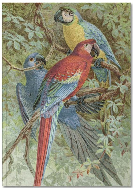 Parrots, Macaws Notebook