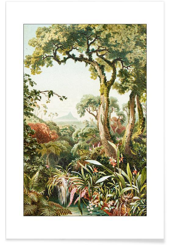 Skove, Botanical Forest Plakat