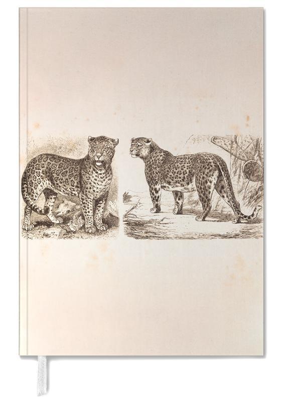 Jaguars, Jaguars agenda