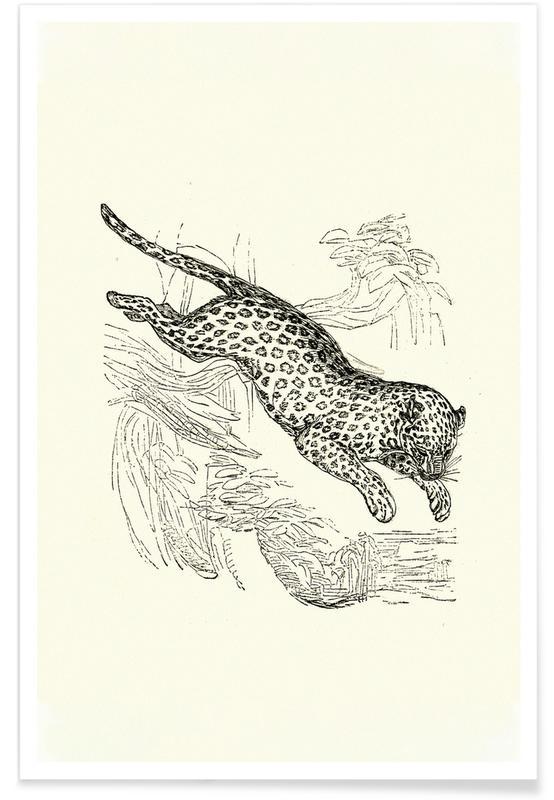 Leoparder, Leopard Plakat
