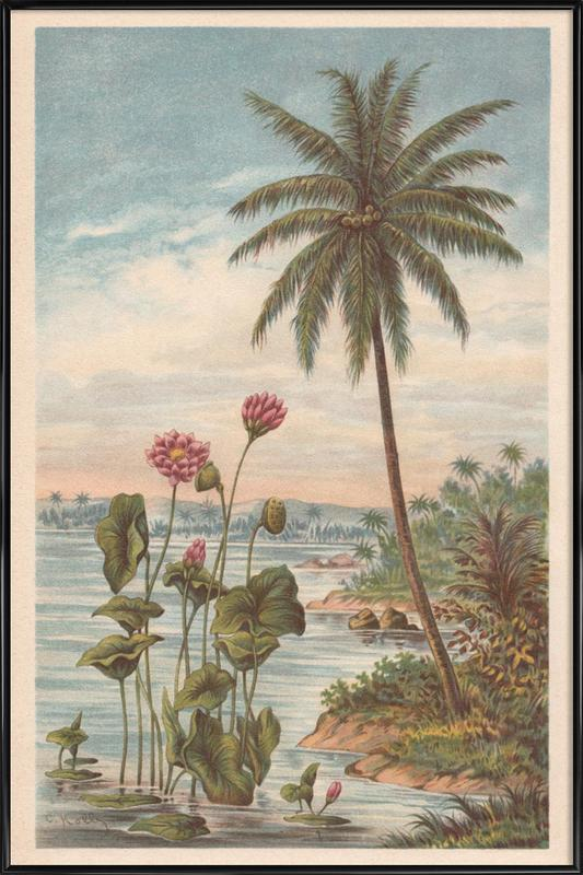 Lotus Flowers Poster i standardram