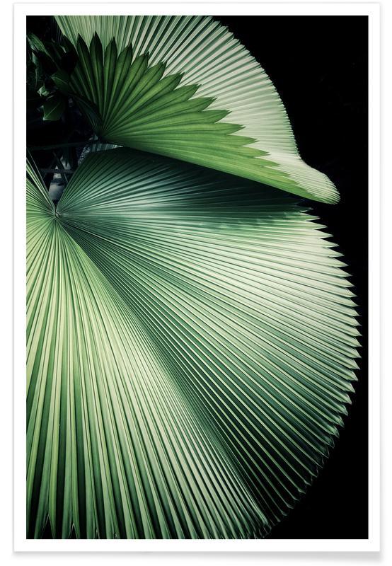 Blade & planter, Palmer, Sharp Palm Plakat