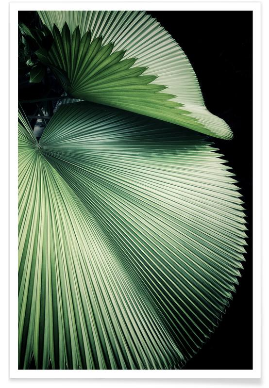 Sharp Palm Poster