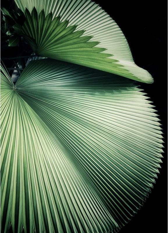 Sharp Palm -Leinwandbild