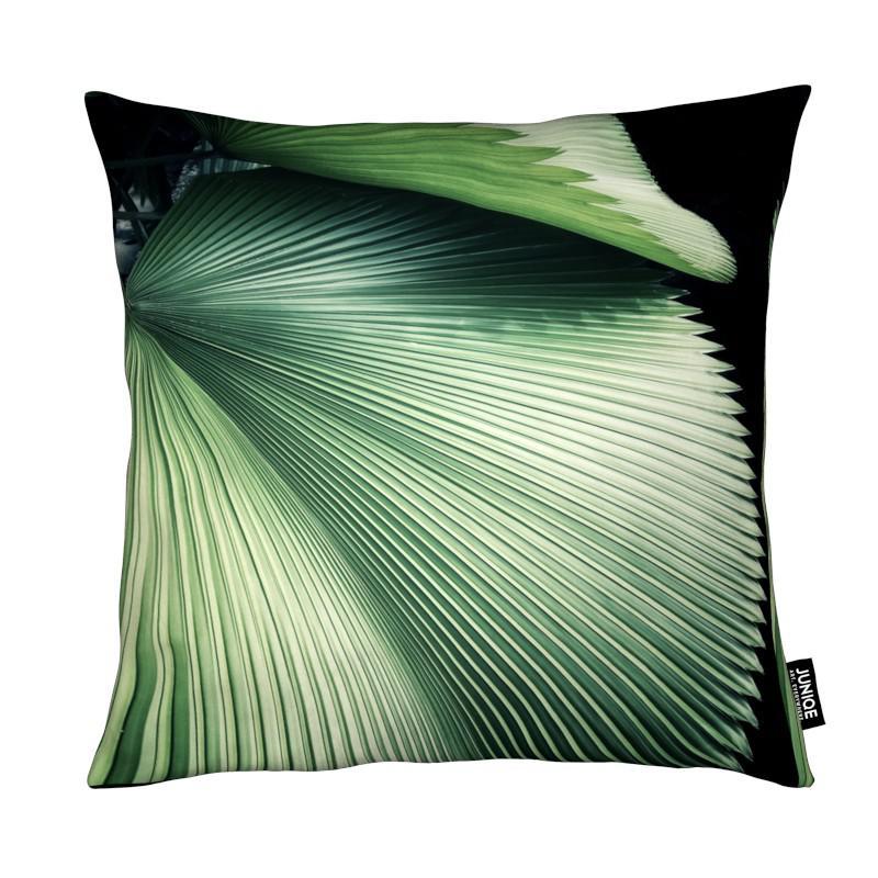 Blätter & Pflanzen, Palmen, Sharp Palm