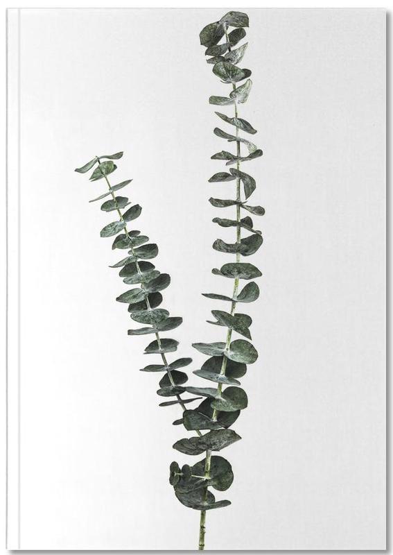 Silver Dollar Plant Notebook