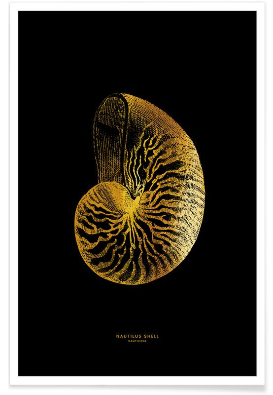 Gold Nautilus Shell Poster
