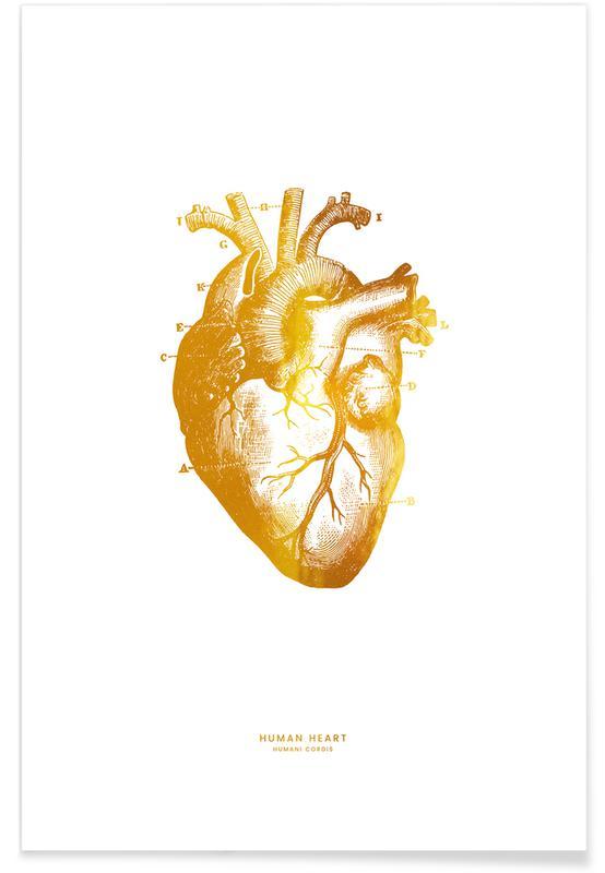 Gold Human Heart Poster