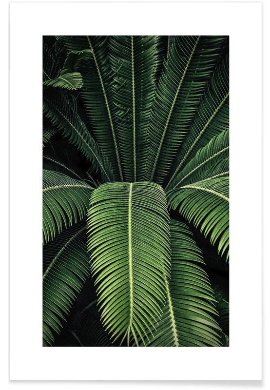 Foglie & piante, Foglie ombreggiate poster