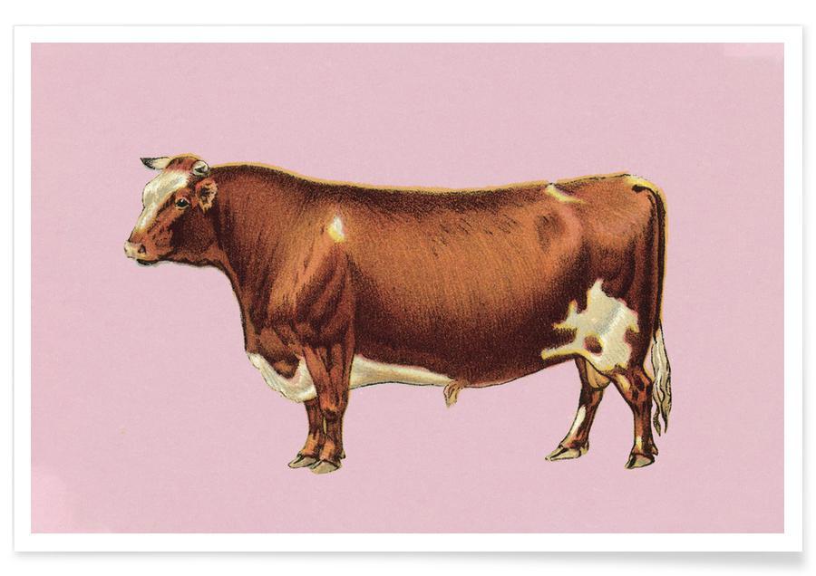Cows, Bessie Poster