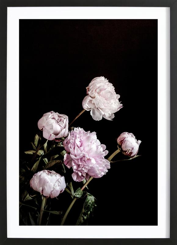 Peonies Pink and Black Poster i träram