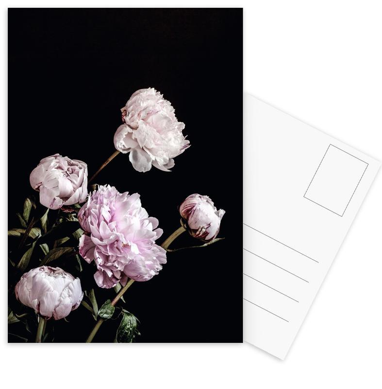 Peonies Pink and Black -Postkartenset