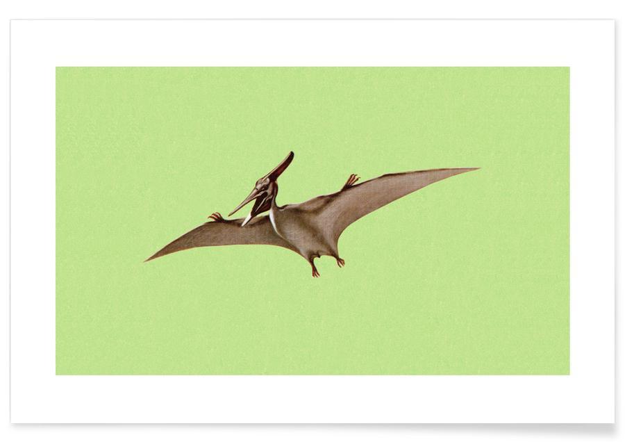 Dinosaurs, Pterodactyl Poster
